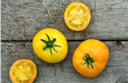 Spreads Pomodori-page-002